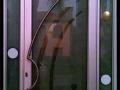 Designer Glass Door #2